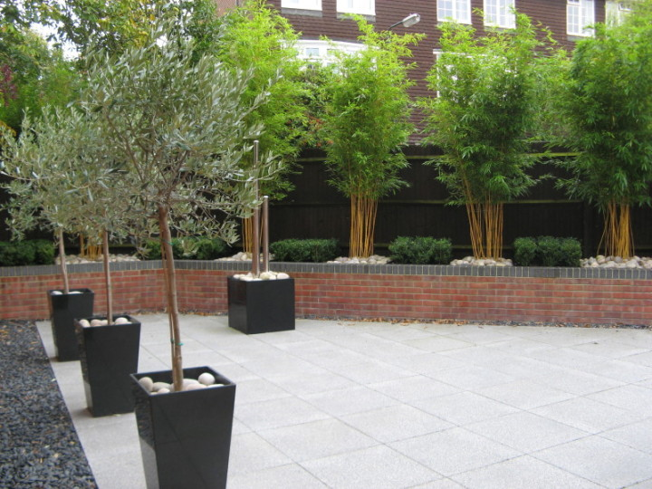 simply garden design ascot clean lines