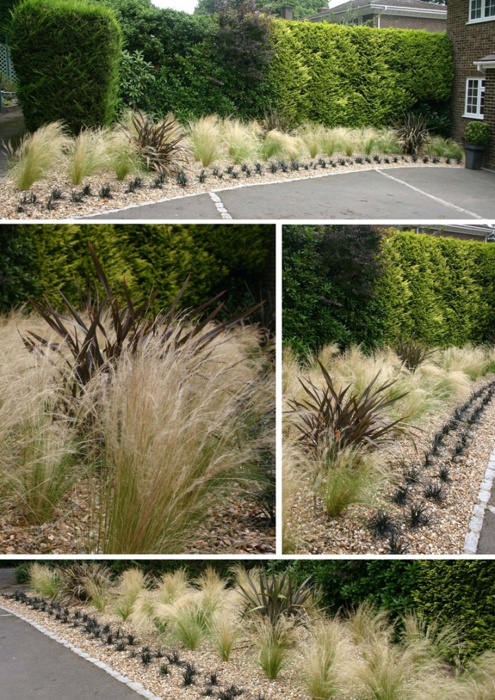 Simply garden design ascot waving in the wind Simply garden design